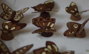 choco vlinders